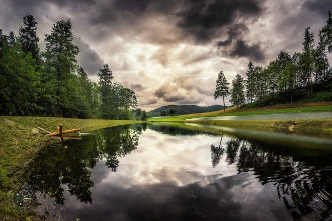 森と湖がある画像