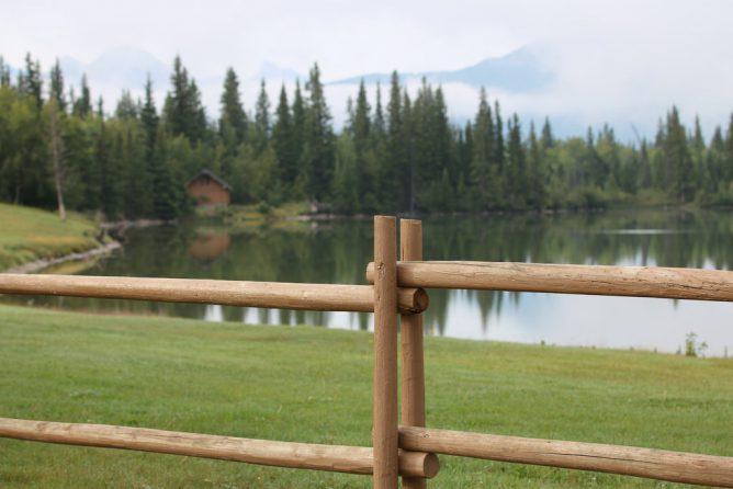 森と湖のある画像