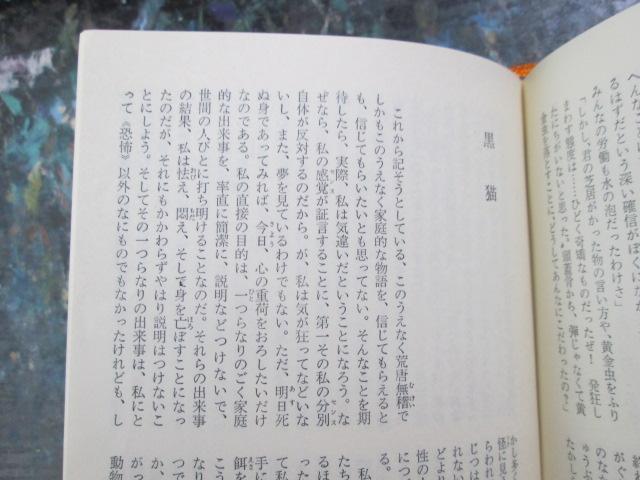 img_1951