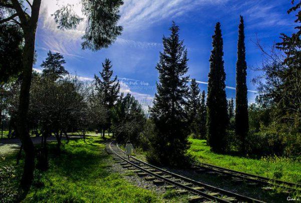 線路のある風景の画像