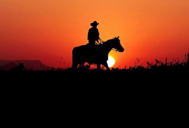 夕日を背にする馬と人間の影の画像