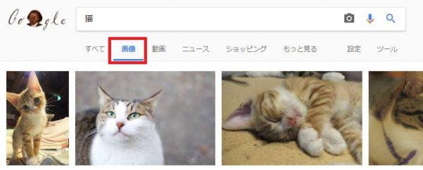 猫の画像がある検索結果
