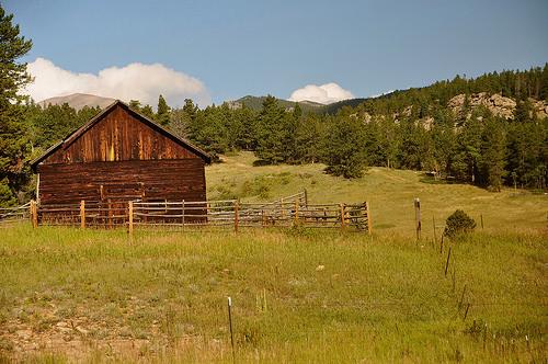 大草原の小さな家 アルバート その後