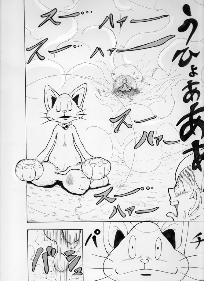 猫のチッティ004