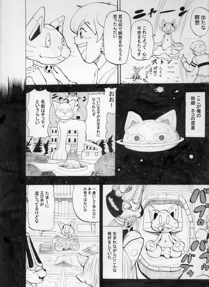 猫のチッティ016
