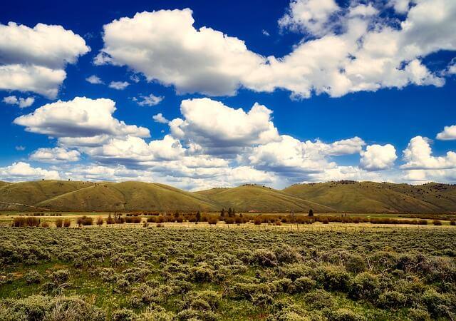 大草原の小さな家 ウォルナットグローブ電話局