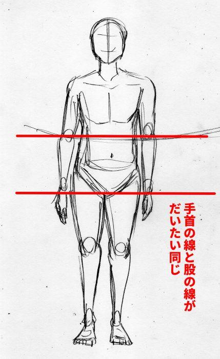 漫画の体の描き方 アタリ 股の位置