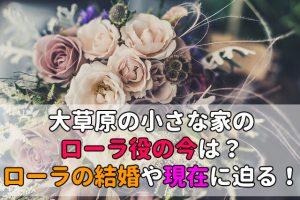 大草原の小さな家,ローラ,今 (1)