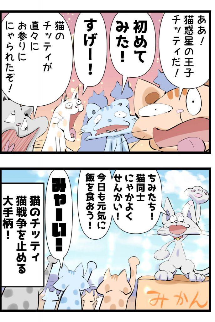 野良猫,漫画